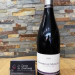 Chambolle-Musigny 2019 rouge - Domaine Anne et Hervé SIGAUT
